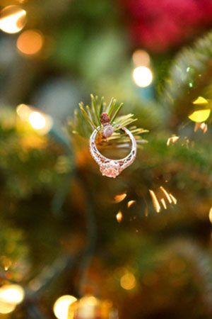 Kouzlo Vánoc - Obrázek č. 39