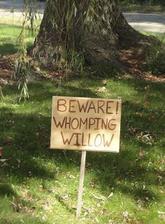 Pozor, vrba mlátička!