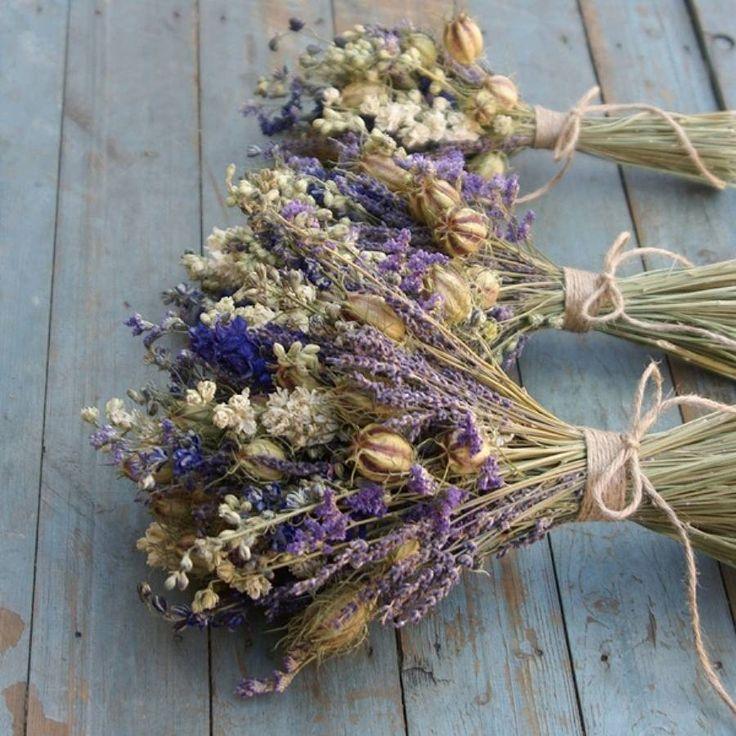 Usušené květiny - Obrázek č. 40