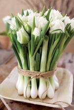 Jarní cibulka není jen k jídlu :)