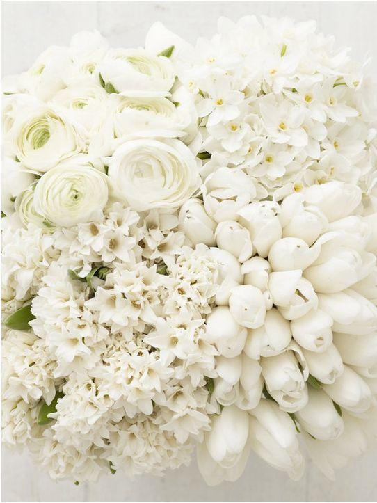 Čistě bílá - Obrázek č. 17