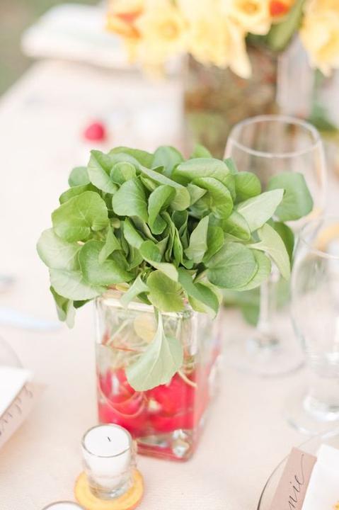 Zeleninová - Obrázek č. 46