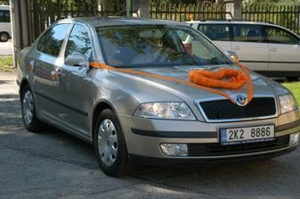 auto nevesty