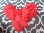 Cervene lupene,