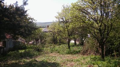 nasa zahrada, v pozadi nas domcek