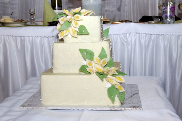 26.04.08 Sylvia a Peter - naša svadobná torta