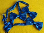 Motýlci - královsky modrá ,
