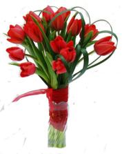 chtěla bych kytičku z tulipánů