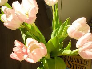 dnešní slunečné ráno a tulipány