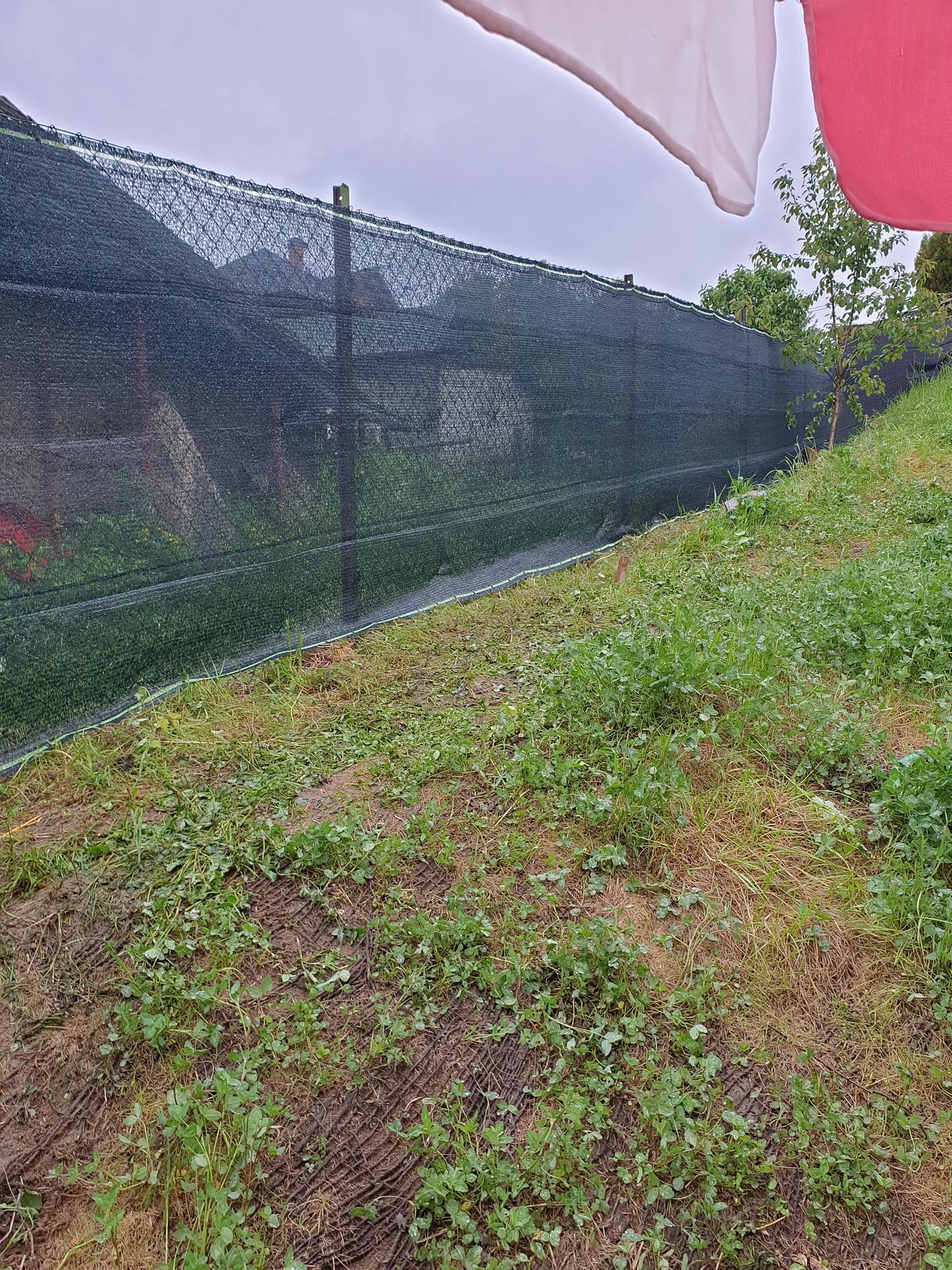 Novy plot. - Obrázek č. 2