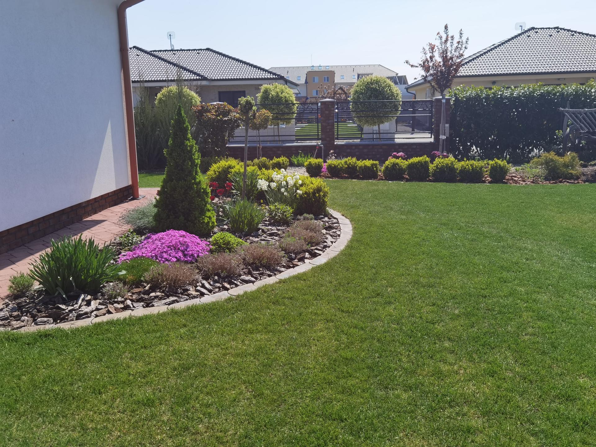 Záhrada 2021 - Obrázok č. 3