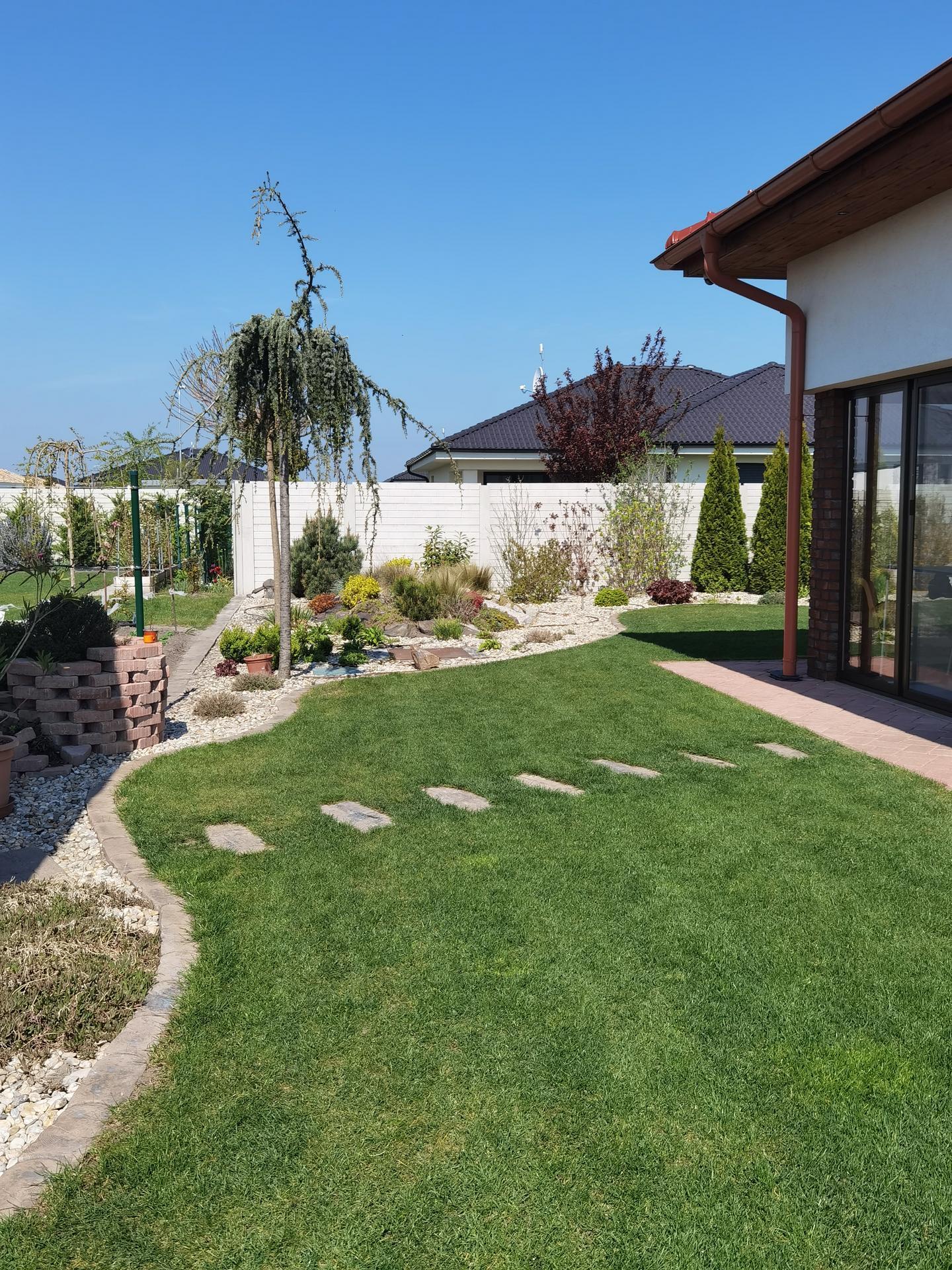Záhrada 2021 - Obrázok č. 4
