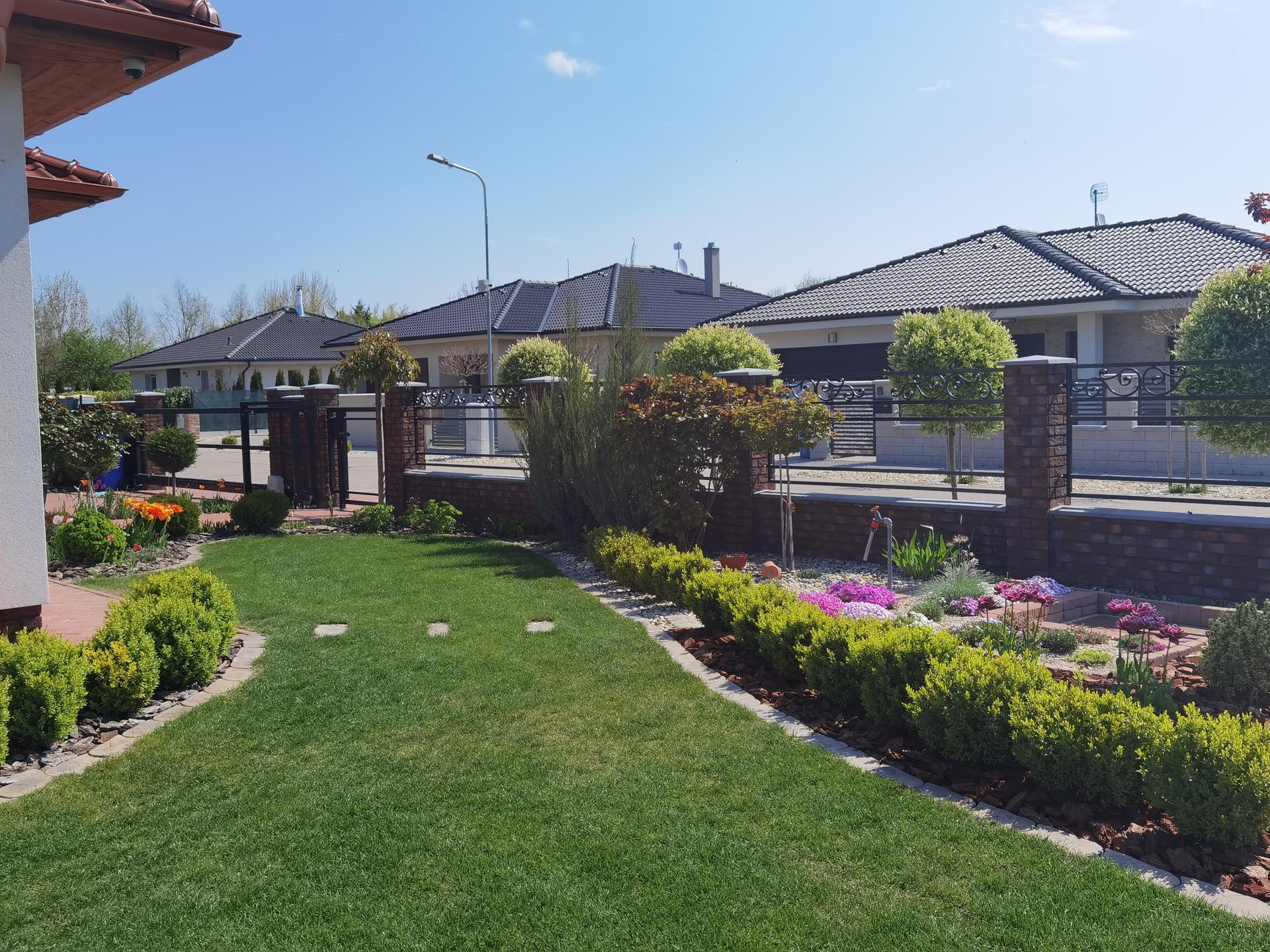 Záhrada 2021 - Obrázok č. 5