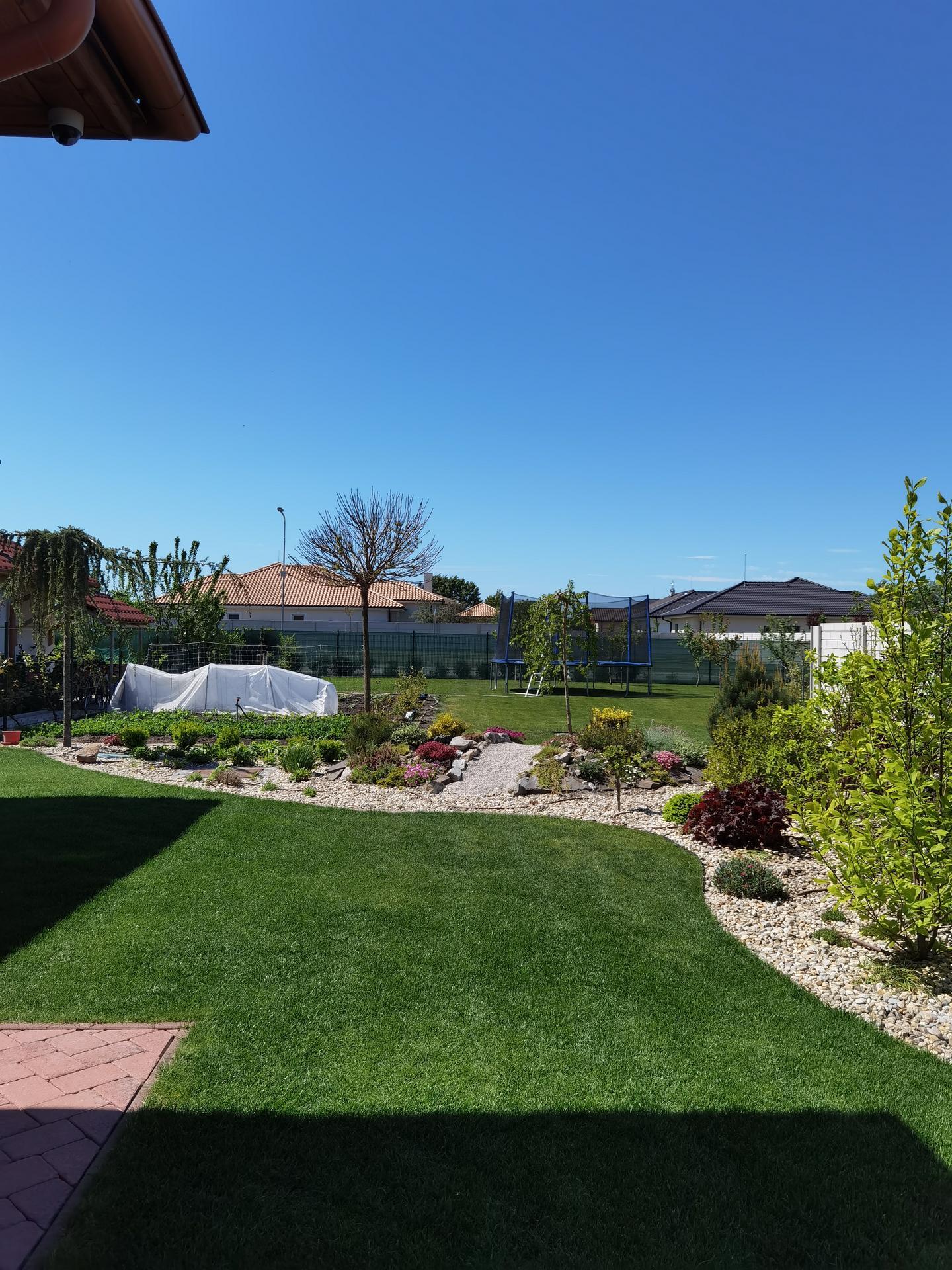 Záhrada 2021 - Obrázok č. 21