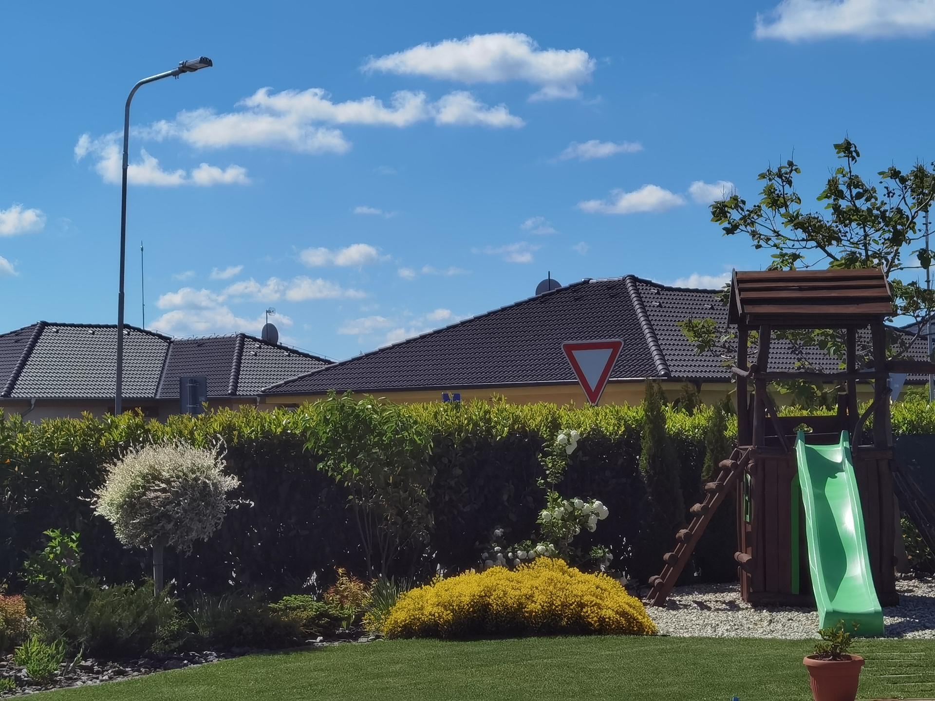 Záhrada 2021 - Obrázok č. 30