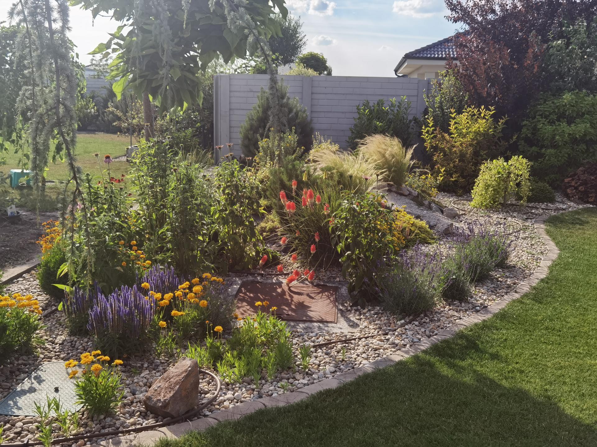 Záhrada 2021 - Obrázok č. 34
