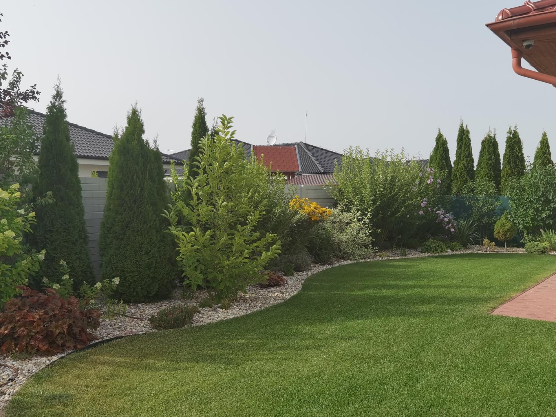 Záhrada 2021 - Obrázok č. 40