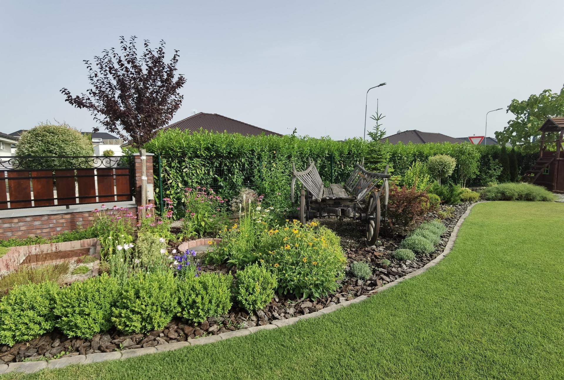 Záhrada 2021 - Obrázok č. 37