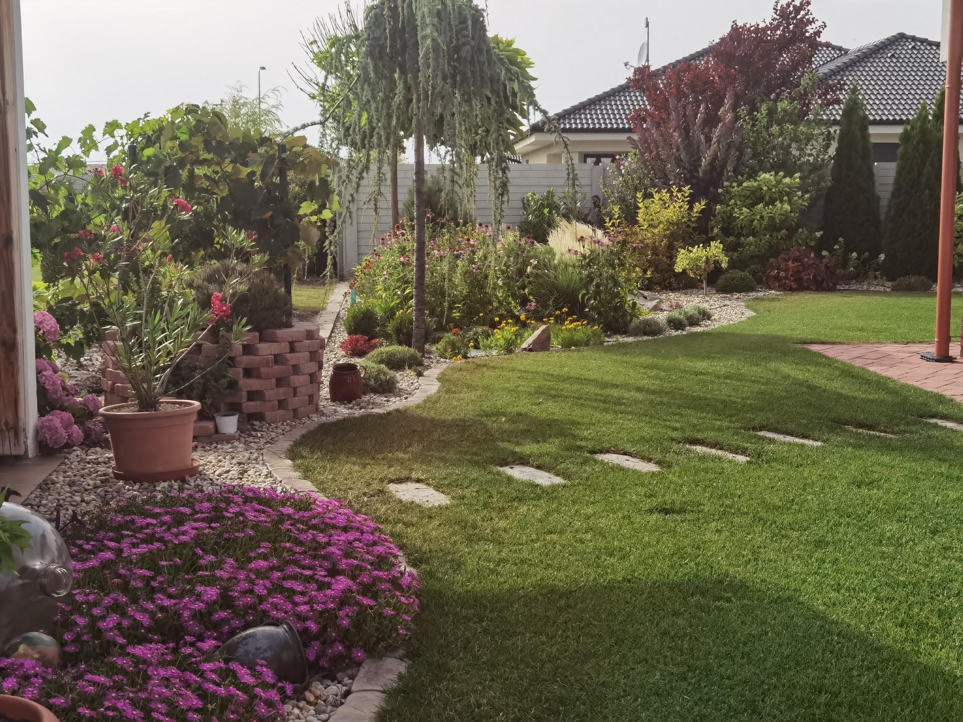 Záhrada 2021 - Obrázok č. 41