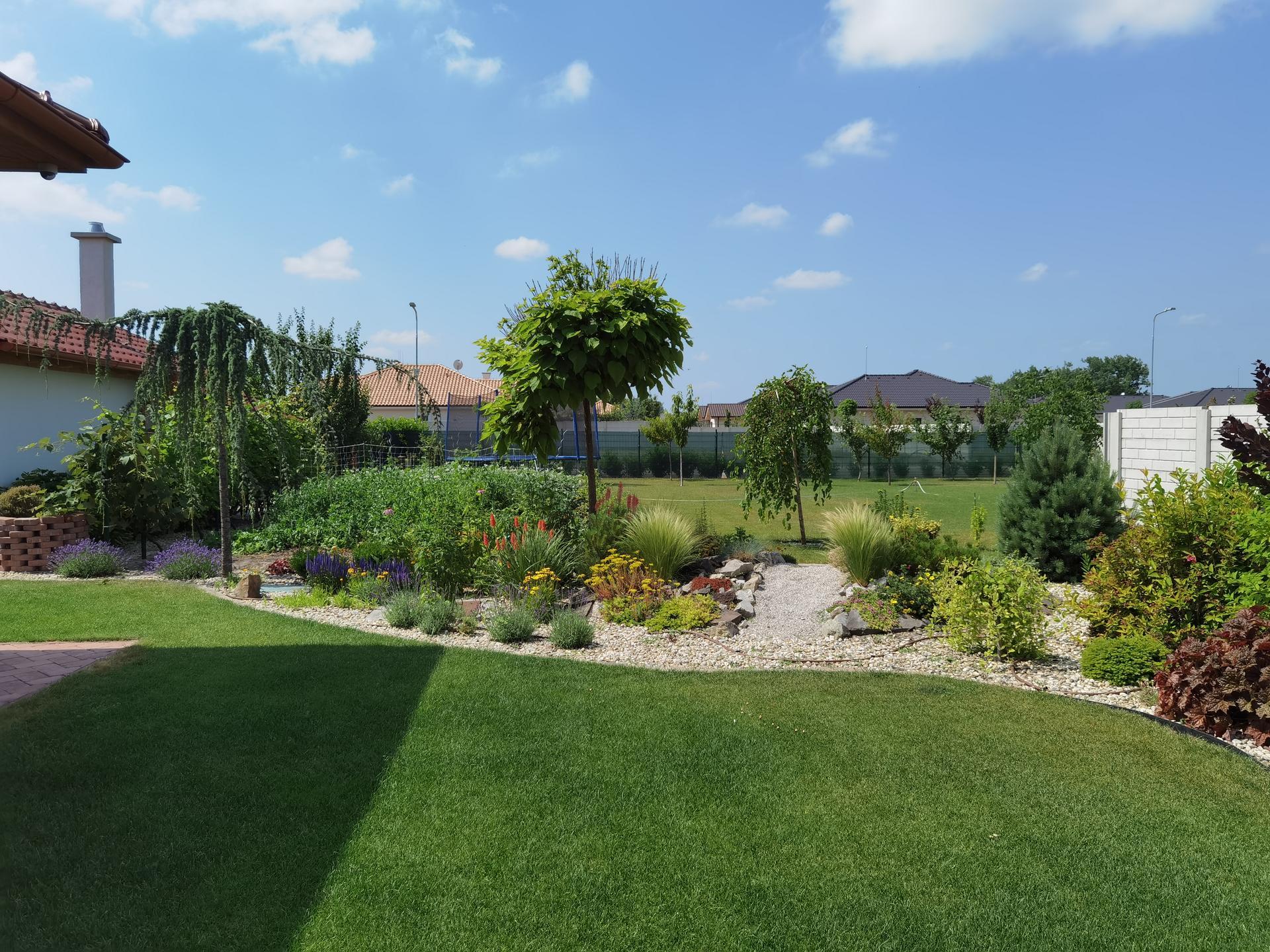 Záhrada 2021 - Obrázok č. 44