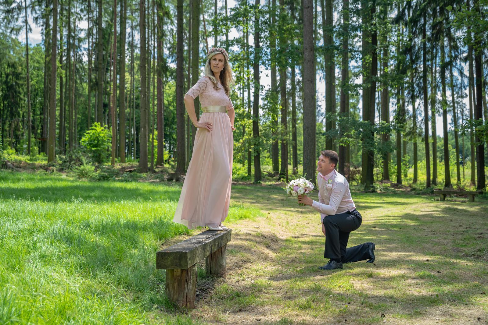 Vážení a milí snoubenci,  rád... - Obrázek č. 3