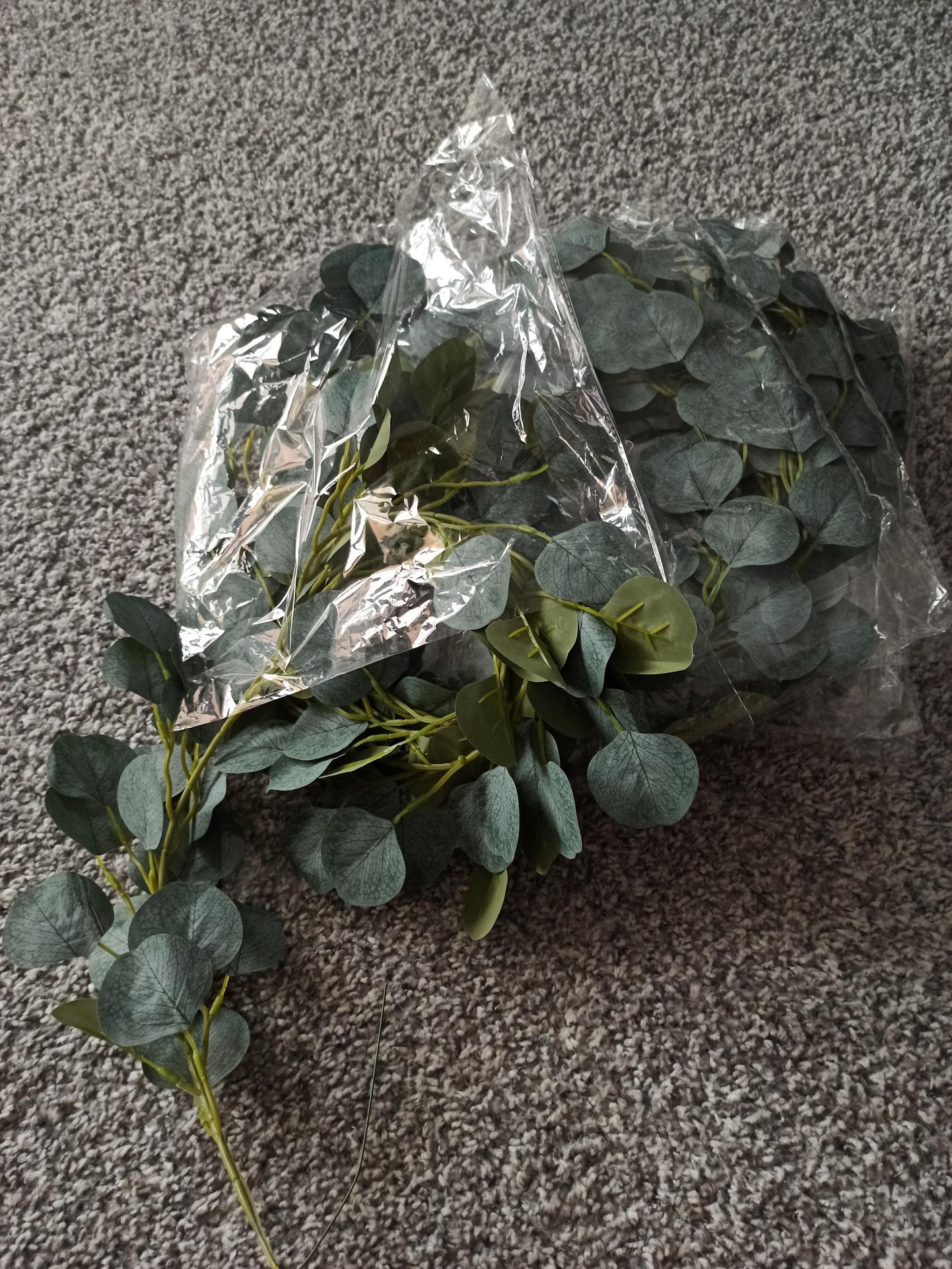 Přípravy :) - Pár eukalyptů na dekorace fotokoutku 😇