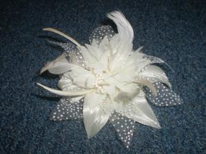 Kvet do vlasov