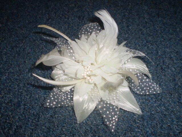 Nase pripravy :))) - Kvet do vlasov