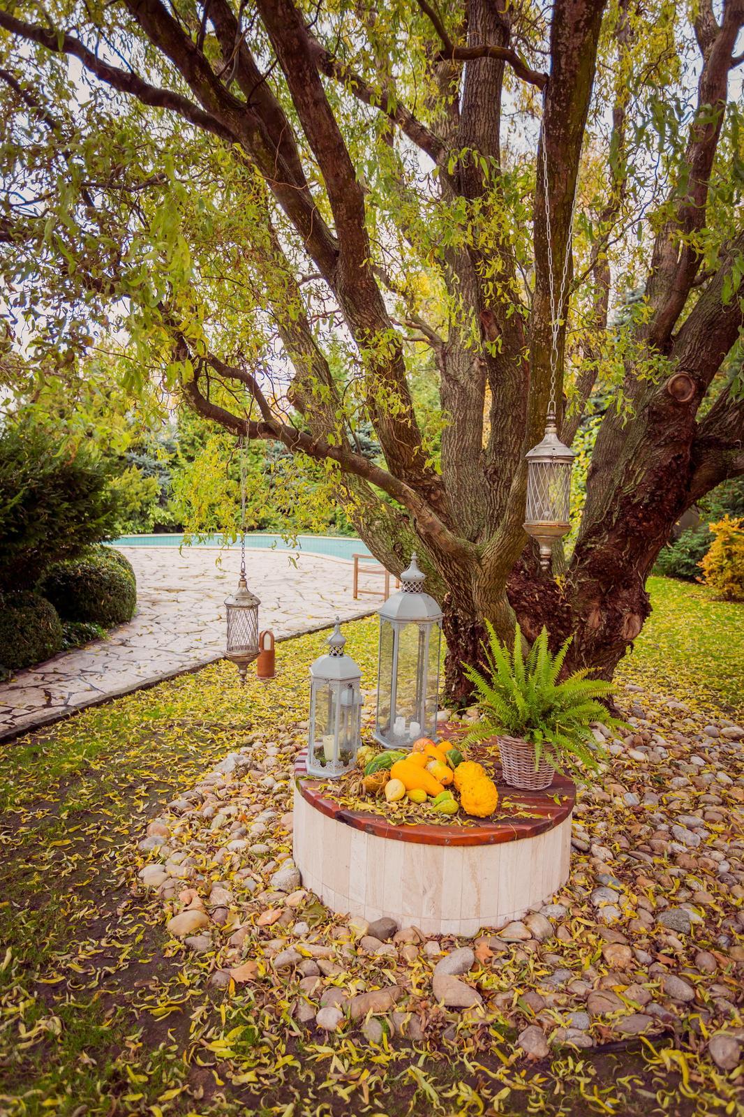 Krásna jeseň v Casteli - Foto:https://www.facebook.com/marian.csano.photography?fref=ts. Priestory, catering, výzdoba, svadobná torta, candy bar: www.castel.sk