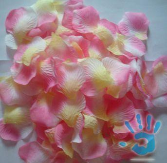 Naše krááásne a romantické zásnuby :o) 24/12/2009 :o) - Tak tieto nádherné lupienky už mám doma :) (3.2)