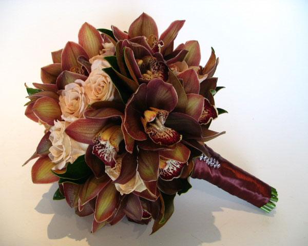 Hnědé orchidee