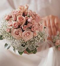 růže-růžové