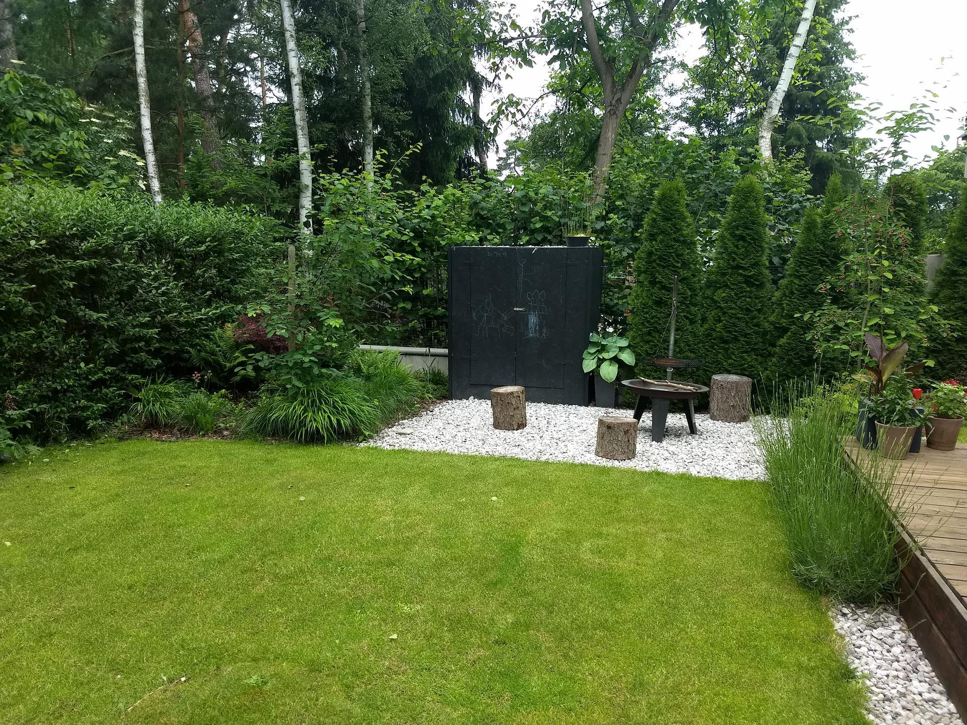 Zahrada po pěti letech - Obrázek č. 2