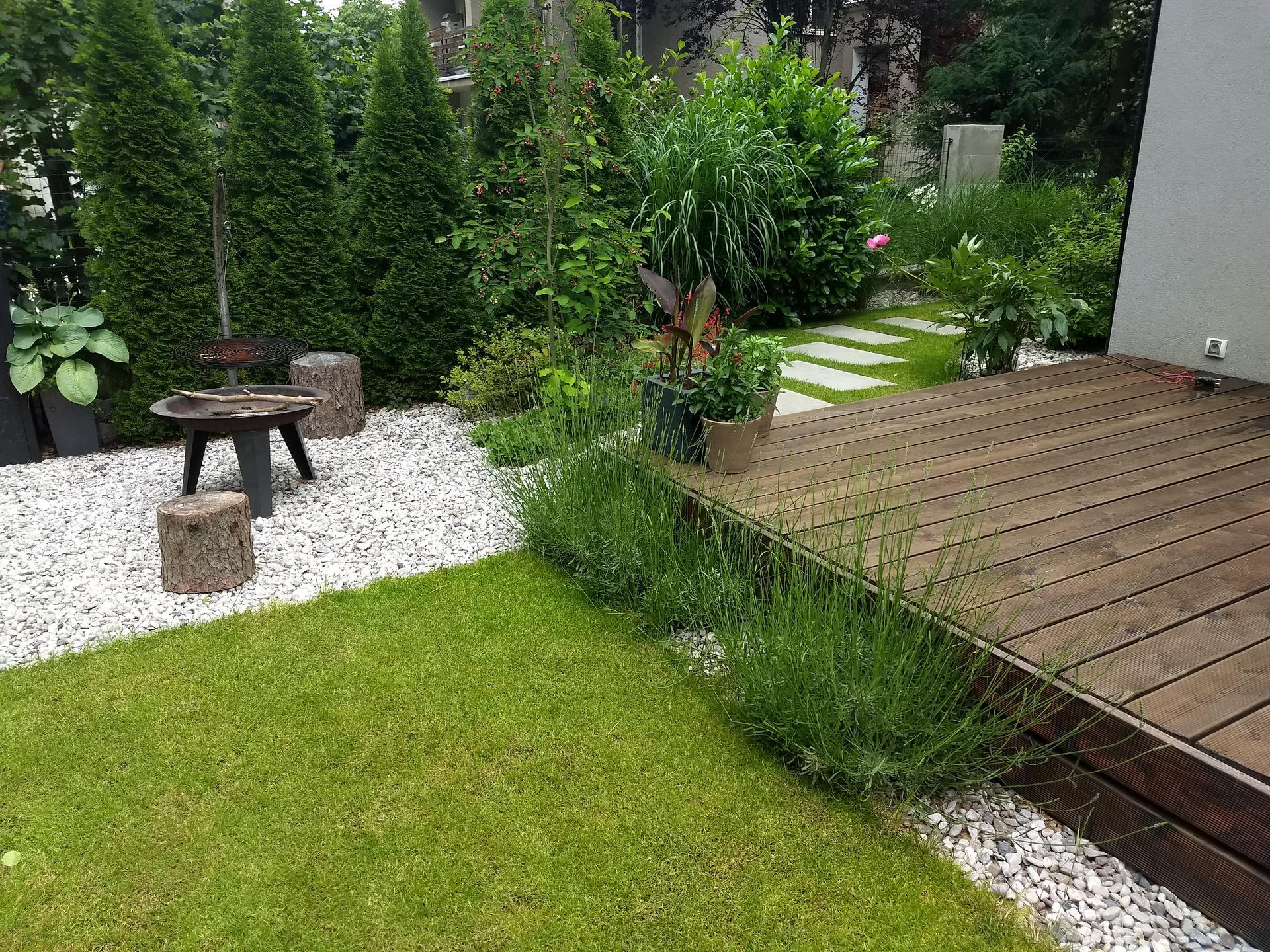 Zahrada po pěti letech - Obrázek č. 8