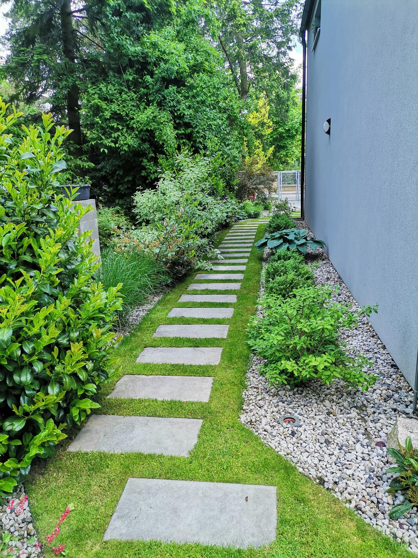 Zahrada po pěti letech - Obrázek č. 19