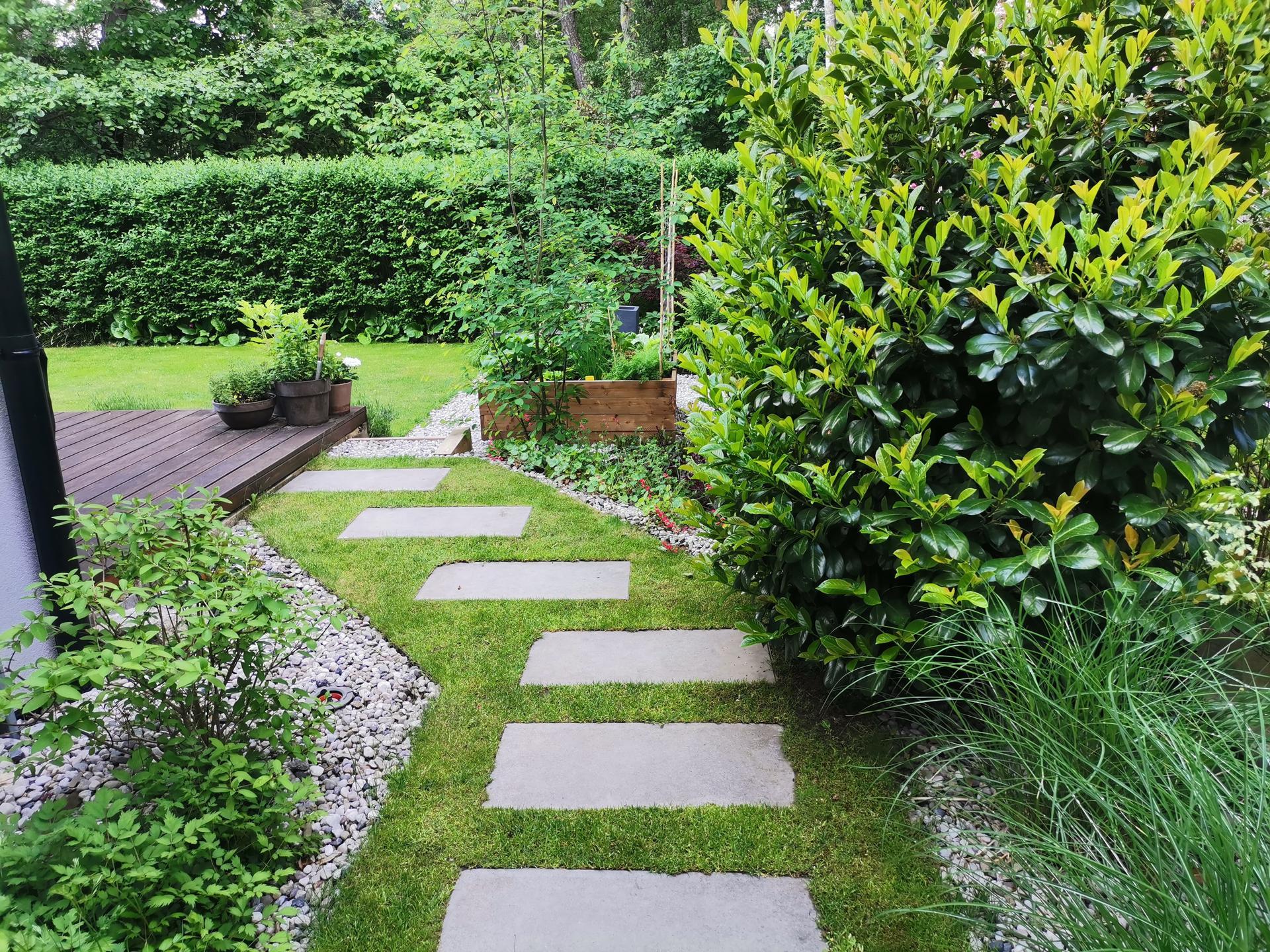Zahrada po pěti letech - Obrázek č. 18