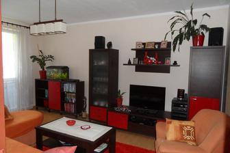 Nová obývačka, koberec, svetlo, kvetináče, doplnky..., už ostáva vymeniť len sedačku a zárubne...