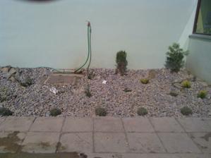 konečne bude aj záhradka
