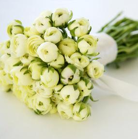 Kvety - Obrázok č. 24