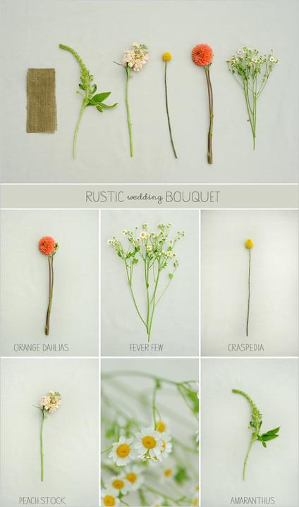 Kvety - Obrázok č. 56