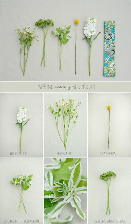 Kvety - Obrázok č. 57