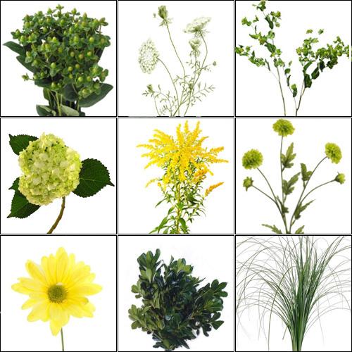 Kvety - Obrázok č. 59