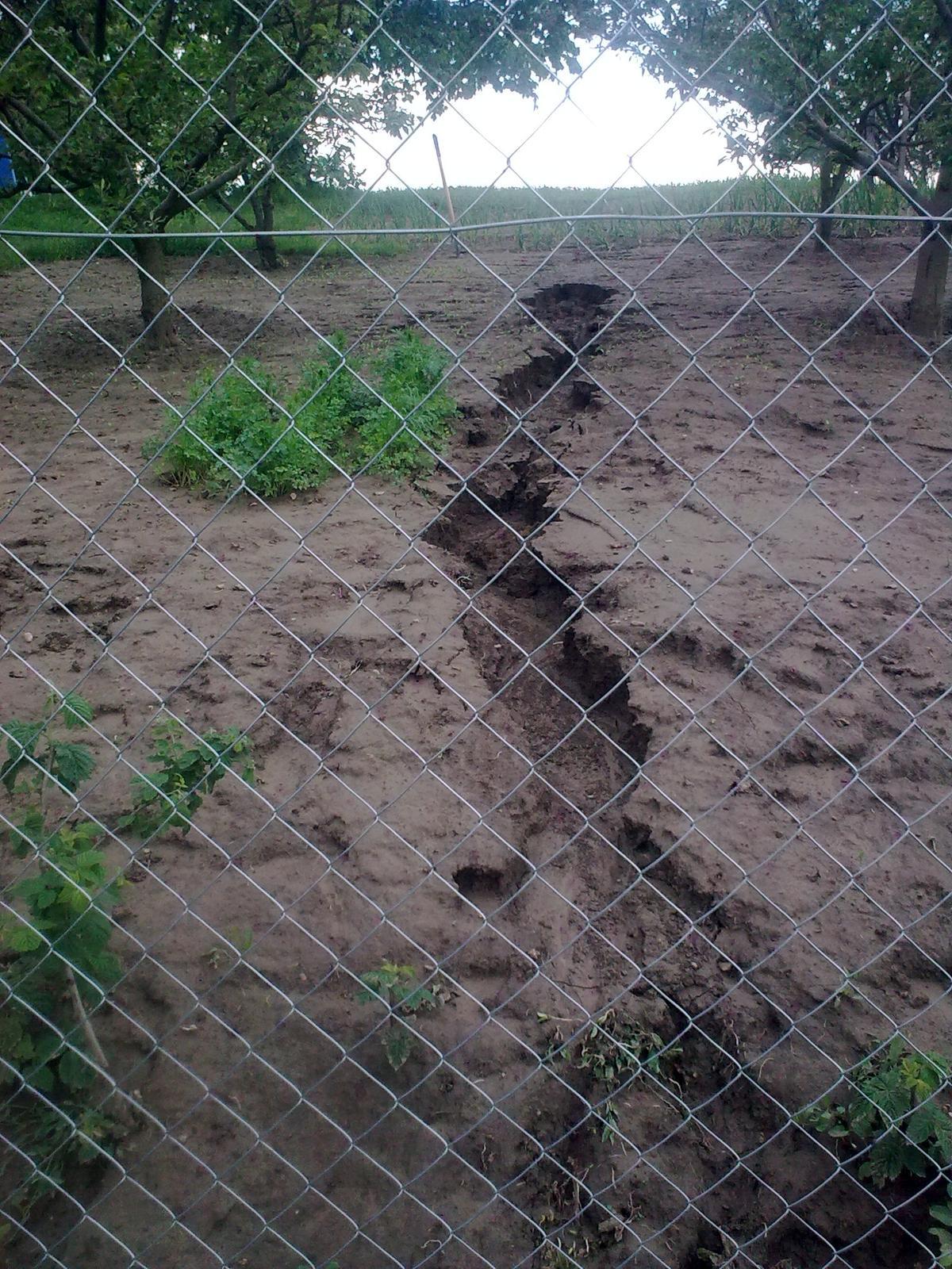 """Naša záhradka po včerajšom """"daždi"""" - Obrázok č. 5"""
