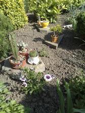 aranzma ala ja... pomaly ale isto je tam stale viac a viac kvetov
