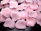 Lupene ruží ružové100 ks ,