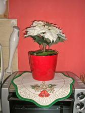 tuto krasnu vianocnu ruzu v nadhernom vianocnom crepniku mi kupil moj milovany manzel :)