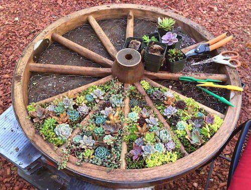 Na záhradke - inšpirácie z celého záhradného sveta. - Obrázok č. 94