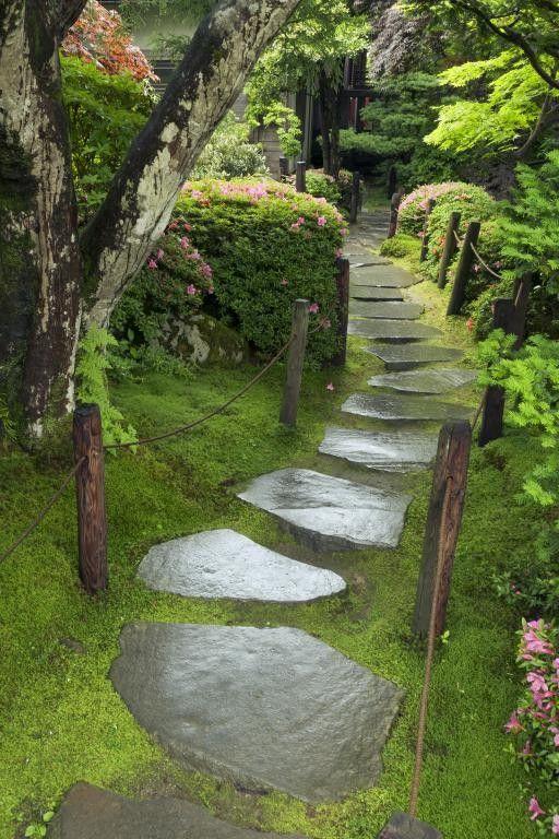 Na záhradke - inšpirácie z celého záhradného sveta. - Obrázok č. 96