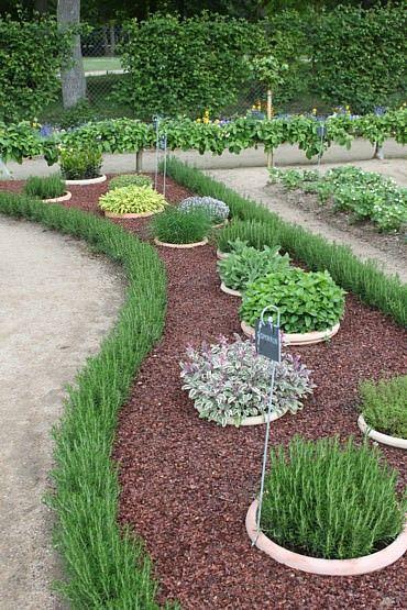 Na záhradke - inšpirácie z celého záhradného sveta. - Obrázok č. 129