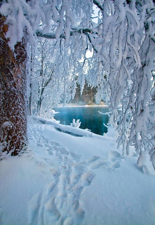Zima je zimička :) - Obrázok č. 53
